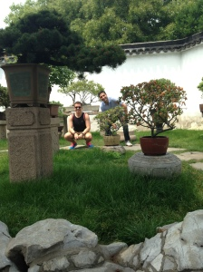 The garden of bonsai trees - SuZhou.
